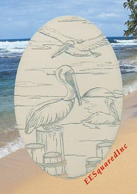 PELICAN SCENE STATIC CLING WINDOW DECAL New Oval 8x12 Tropical Pelicans Decor
