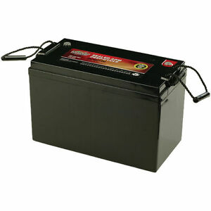Interstate Batteries 12v Maintenance Free Deep Cycle 100ah