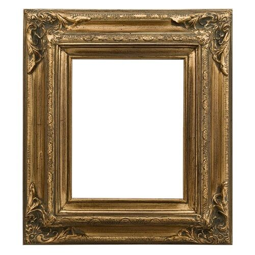 Eli Frames Upscale Gallery Picture Art Frame Wood Brushed or Leaf 3.5  Wide NW