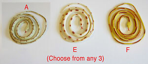 """6 COILED RAIN FOREST RUBBER SNAKES 36/"""" TOY REPTILE FAKE JUNGLE SNAKE GAG GIFT"""