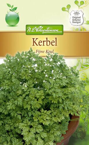 "Josiane /""FIJNE Krul/"" Herbes salade graines pour environ 3-5 Stage order mètres 4945"