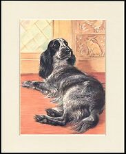 COCKER SPANIEL CHARMING LITTLE DOG PRINT MOUNTED READY TO FRAME