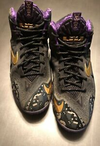 innovative design 32845 7a2a1 Image is loading Nike-Lebron-James-11-Black-History-Month-GS-