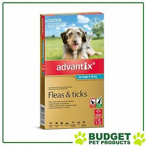 ADVANTIX For Medium Dogs 4-10kg 6 Pack With Extra 5 Doses