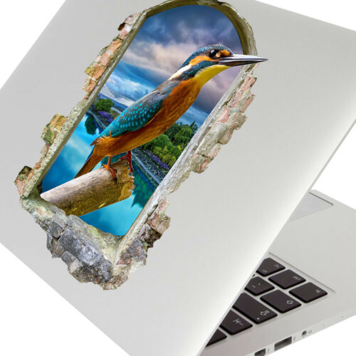 F710 Kingfisher Bird River SCENIC Wall Stickers Ordinateur Portable Filles Garçons Living porte