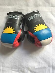 Hang in your Car ROOTS RASTA Roots RED GOLD GREEN STRIPE MINI BOXING GLOVES