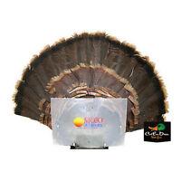 Mojo Outdoors Turkey Fan Press Trophy Mount Hunting Decoy Blind Hide