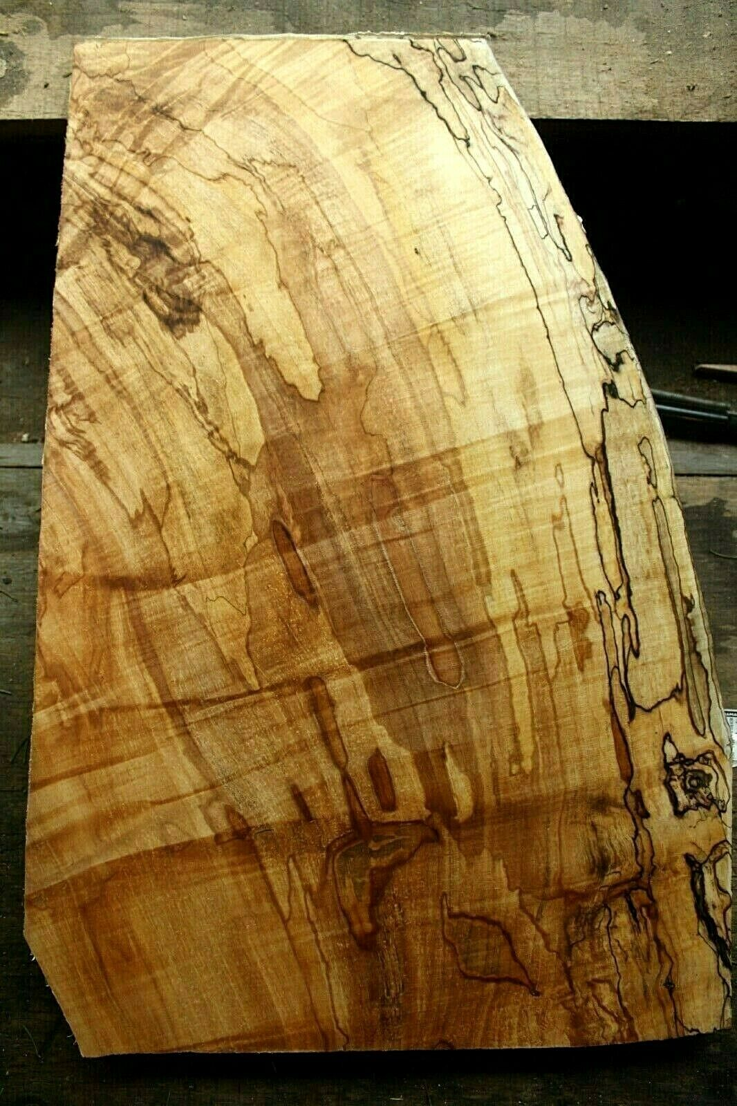 1pc 7 8  thk curly spalted figuröd ambrosia maple carved top guitar bass 984