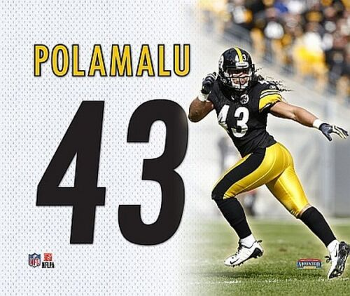 Pittsburgh Steelers canvas tela immagine parete 28cm Troy Polamalu NFL Football