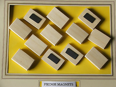 FRIDGE MAGNETS, PYROGRAPHY,HARDWOOD BLANK  (45mmX30mm),£3-25FOR 12 +POST 0.99p