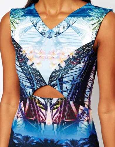Bnwt River île pittoresque imprimer coupés montés robe de soirée occasion 16 nouveaux