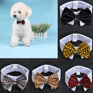 Wonderful Bow Tie Bow Adorable Dog - s-l300  Picture_282791  .jpg