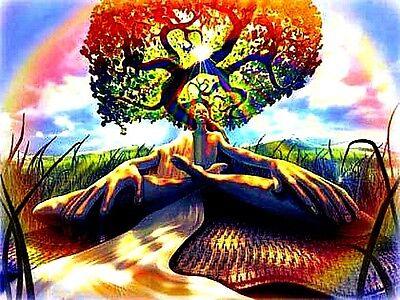 "3"" WISDOM OF THE BODHI TREE Sticker / Decal Yoga Chakra Meditation Buddha Hindu"