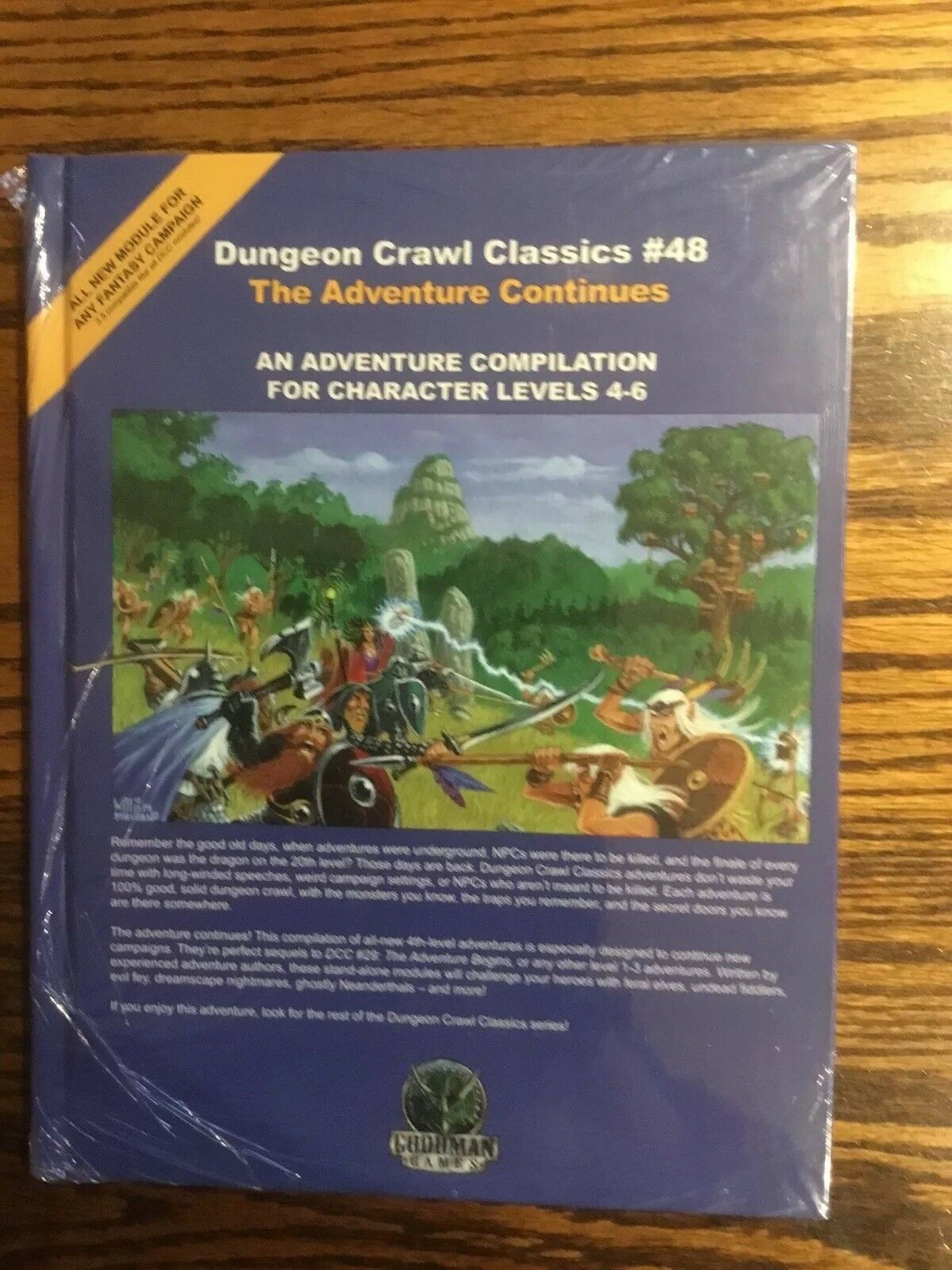 Dungeon Crawl Classics 48 The Adventure Continues D&D AD&D Pathfinder