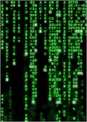 The Matrix Classic Large Movie Poster Print
