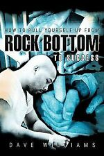 How to Pull Yourself up from Rock Bottom to Success by Dave Williams (2010,...
