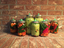 Waterless Airlock for Wide Mouth Mason Jar Lacto Fermenting 5 Pack