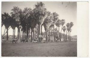 1920's Santa Monica, California - REAL PHOTO Los Angeles Beach Town