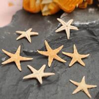20X Mini Starfish Sea Star Shell Beach Wedding Craft DIY Making Decor Landscape