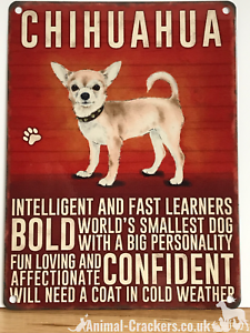 20cm-metal-vintage-style-Chihuahua-lover-gift-breed-character-hang-sign-plaque