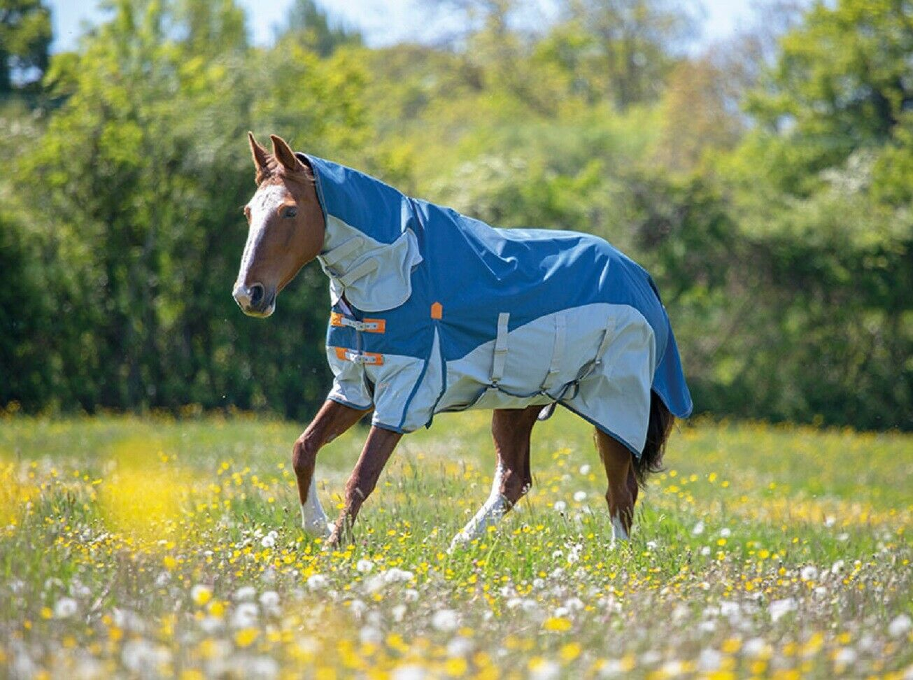 Shires Highlander Plus Waterproof Fly Midge Horse Rug + 90% UV Sun Protection