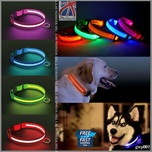 LED-Perro-collar-mascota-parpadeante-Luminoso-regulable-seguridad-iluminacion