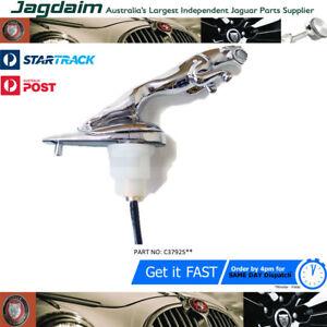 New-Jaguar-Chrome-XF-Leaping-Cat-Bonnet-Mascot-Hood-Ornament-C2Z1126