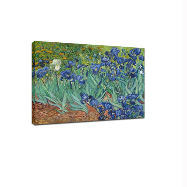 Irises Van Gogh Fine Art Canvas Print Painting Reproduction Picture Poster Decor