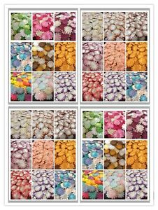 100-Artificial-Mulberry-Paper-flowers-Petal-Handmade-Daisy-Scrap-booking-2-5cm-C