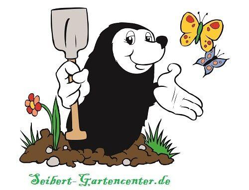 Mischung Wicken Duftwicken MHD 01//22 Kiepenkerl 788