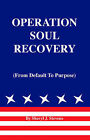 Operation Soul Recovery: From Default to Purpose by Sheryl J. Stevens (Paperback, 2003)