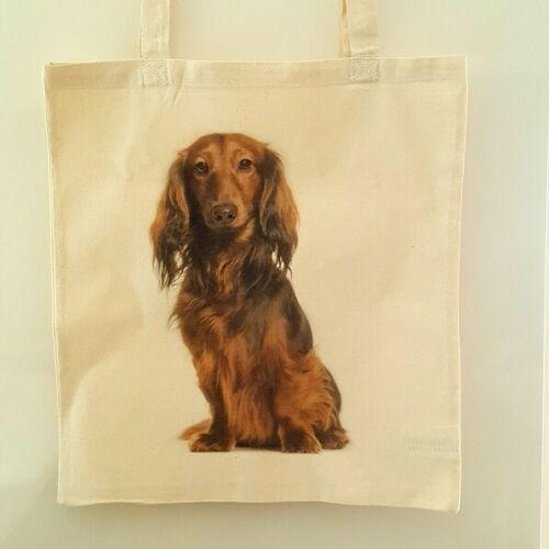 DACHSHUND DOG TOTE  BAG SHOPPER REUSABLE BAG GREAT GIFT FOR SAUSAGE FANS DAXIE