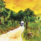 Disciples of California by The Skygreen Leopards (Vinyl, Oct-2006, Jagjaguwar)