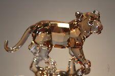 b418b3a1c6f item 6 Swarovski Crystal 2010 SCS Tiger Cub Standing 9100 NR 165 1016677  Mint MIB -Swarovski Crystal 2010 SCS Tiger Cub Standing 9100 NR 165 1016677  Mint ...