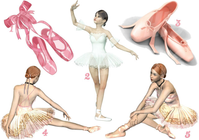 BALLET DANCE BALLERINA SHOES STICKER WALL DECAL OR IRON ON TRANSFER TSHIRT lot B