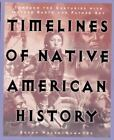 Timelines of Native American History : Through the Centuries with Mother Earth and Father Sky by Susan Hazen-Hammond (1997, Paperback)