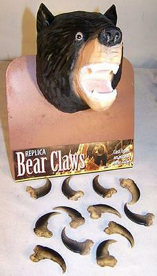 25 BLACK BEAR REPLICA CLAWS bears nails WILD animal claw LOT new items pendant