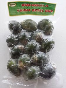 Details about YOUNG BETEL NUTS Areca Catechu nut FREE PRIORITY SHIPPING US  SELLER can B Dried