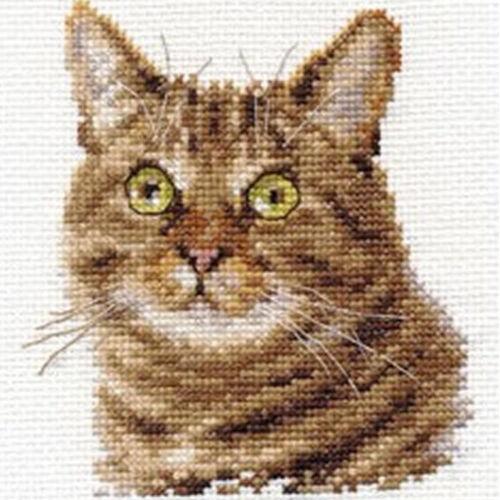 European Cat Alisa Cross Stitch Kit