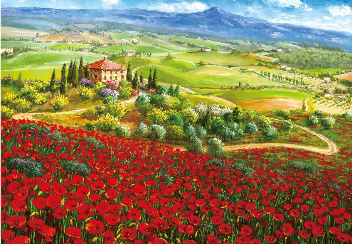 Tuscan hills full of poppies      1000 Piece Jigsaw Puzzle for Adult 6b5904
