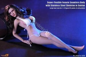 TBLeague-1-6-Phicen-Female-Body-PLLB2014-S09-Large-Bust-Seamless-Girl-Figure