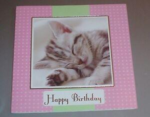 Lovely-Kitten-Birthday-Card