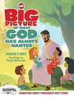 The Big Picture of What God Has Always Wanted by Dr Charles F Boyd (Hardback, 2013)