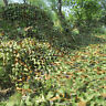 4Mx2M Hunting Camping Woodlands Blinds Army Camouflage Camo Net Netting Cover