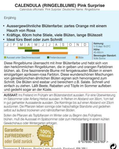 EPOSGEAR/® 100 C4//A4 325mm x 234mm Clear Cello//Cellophane Greetings Cards Display Bags