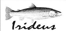 Irideus czech nymph fly fishing flies Big Trout Heavy Weight Leggy trout flies