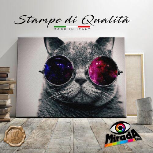 QUADRO cat glasses occhiali rosa STAMPA SU TELA CANVAS ARTE GATTO POP ART FUXIA