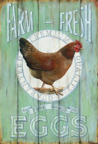 Farm Fresh Eggs Motif 2 Pancarte en Tôle Signe Métal Voûté Étain 20 X 30 CM