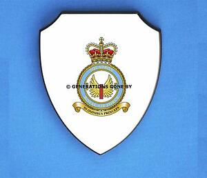 Colour full 1 Wall Air Royal Force Squadron Shield xAYzwBq0