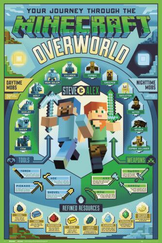 Minecraft Overworld Biome Maxi Poster Print 61x91.5cm24x36 inches